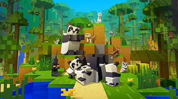 Image of Minecraft video game